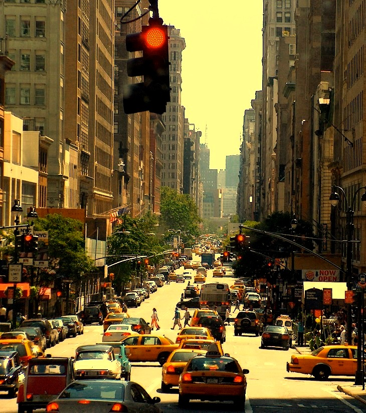 life on a big city Discusses various facets of urban life, including social, economic, and ecological factors.